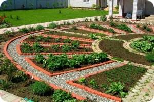 Планирование огорода на участке