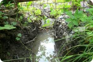 близко грунтовые воды